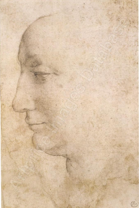 bronzino Head of a woman seen in profile, looking to the left